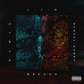 Bruuuh (Remix) de JID