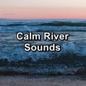 Calm River Sounds de Water Sound Natural White Noise