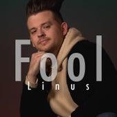 Fool by Linus