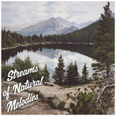 Streams of Natural Melodies - Deep Relaxation Music Therapy, Feel Better, Spring Awakening with Gentle Rain, Peace & Harmony de Nature Sound Collection
