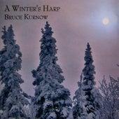 A Winter's Harp by Bruce Kurnow