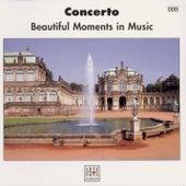 Concerto von Various Artists