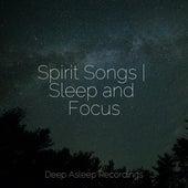 Spirit Songs | Sleep and Focus de Zen Meditate