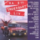 Ha ett underbart liv de Various Artists