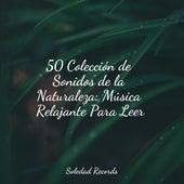 50 Colección de Sonidos de la Naturaleza: Música Relajante Para Leer de Canciones Para Niños