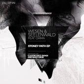 Stoney Path EP by Markus Wesen