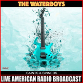 Saints & Sinners (Live) by The Waterboys