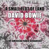 A Small Plot Of Land (Live) by David Bowie