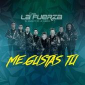 Me Gustas Tú by Grupo La Fuerza El Gigante De La Cumbia