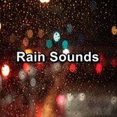 Rain Sounds by Asmr