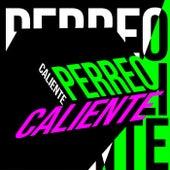 Perreo Caliente de Various Artists