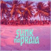 Funk na Praia de Various Artists