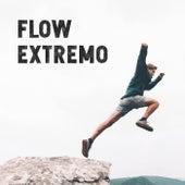 Flow Extremo de Various Artists