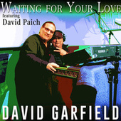 Waiting for Your Love by David Garfield