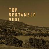 Top Sertanejo 2021 von Various Artists