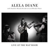 Take Us Back de Alela Diane