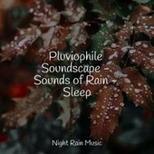 Pluviophile Soundscape - Sounds of Rain - Sleep by Echoes of Nature