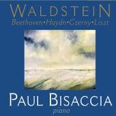 Waldstein von Paul Bisaccia