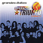 Operacion Triunfo, Grandes Exitos by Various Artists