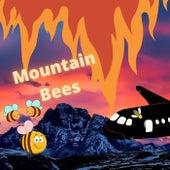 Mountain Bees de Ishinan