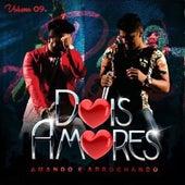 Dois Amores, Vol. 9 de Dois Amores