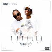 Amandla von Bravo Le Roux