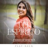 Teu Espírito (Playback) de Danielle Cristina