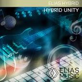 Hybrid Unity by Benson Taylor