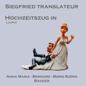 Hochzeitszug In Liliput In D Major, Op. 165 (Arr. For Mandolin Orchestra) von Boris Björn Bagger