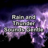Rain and Thunder Sounds Gentle by Thunder Sounds