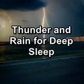 Thunder and Rain for Deep Sleep de Nature Sound Collection