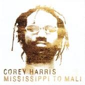 Mississippi to Mali de Corey Harris
