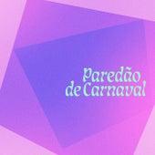Paredao de Carnaval de Various Artists