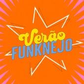 Verão Funknejo de Various Artists