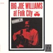 At Folk City de Big Joe Williams
