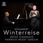 Schubert: Winterreise, Op. 89, D. 911: No. 20, Der Wegweiser by Joyce DiDonato