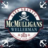 Wellerman (Sea Shanty) de The McMulligans