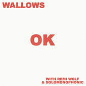 OK (with Remi Wolf & Solomonophonic) by Wallows