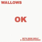 OK (with Remi Wolf & Solomonophonic) von Wallows
