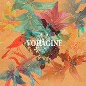 Vorágine de Miguel Ganggini