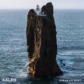 Break My Baby (Live from Þrídrangar) by KALEO