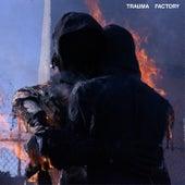 Trauma Factory de Nothing,Nowhere.
