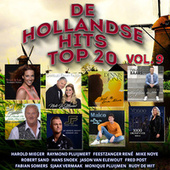 Hollandse Hits Top 20 vol. 9 de Diverse Artiesten
