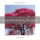 2021 New: Easy Sounds Of Woods For Chill And Relief by Pure Deep Sleep White Noise