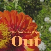 The Surfaris Wipe Out de Various Artists