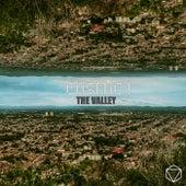 The Valley de Cosmic