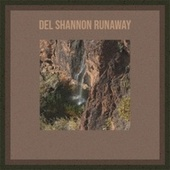 Del Shannon Runaway von Various Artists