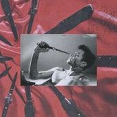 Describe (A. G. Cook Remix) de Perfume Genius