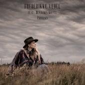 Promises von Frederikke Vedel
