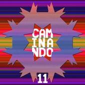 Caminando 11 by Various Artists